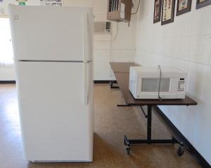 Refrigerator and microwave